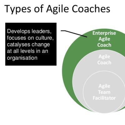 Certified Enterprise Agile Coaching Masterclass (ICP-CAT) Sydney