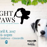 A Night to Paws 2017
