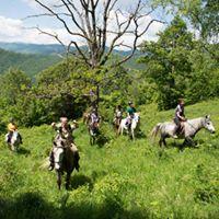 Pe cai la Odai (11 - 13 august)