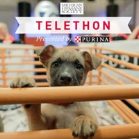 MHS Telethon presented by Purina