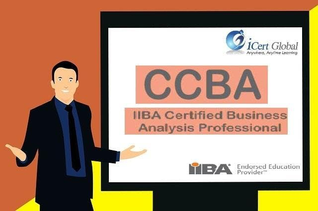 CCBA Classroom Training in Detroit MI
