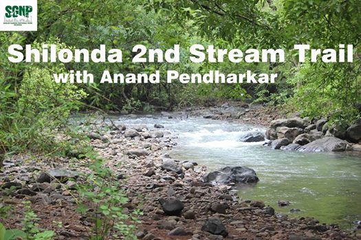 Shilonda 2nd Stream Trail with Anand Pendharkar
