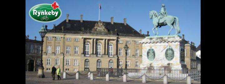 Rundvisning I Christian D Viis Palæ På Amalienborg Slot At