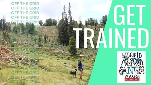 Off The Grid Pet First Aid Course