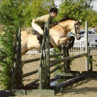 Cindy Sims Working Hunter Pony Clinic