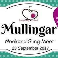 BWI Mullingar Weekend Sling Meet - September 2017