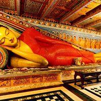 Sri Lanka lIsola Splendente