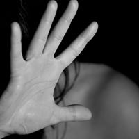 Newsmakers Domestic Violence in WNC