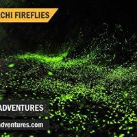 Fireflies Rajmachi Tour - Mumbai Pune Adventures - 27 May 2017