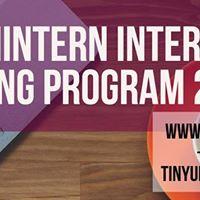 TheTechIntern Internship &amp Training Program 2017