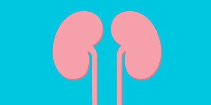 London Nephrology & Transplantation Update 10 April 2019