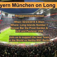 Spieltag 24 FC Bayern Mnchen vs Hertha BSC Berlin