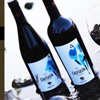 Del sur llegan los vinos de la bodega Videla Dorna