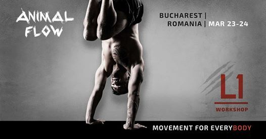 Animal Flow L1 Bucharest