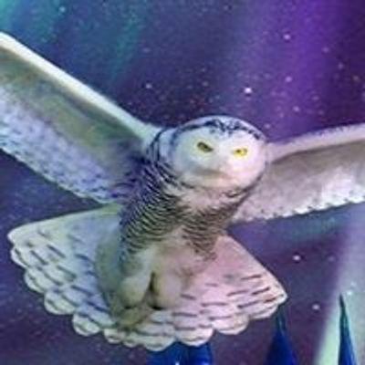 Weekend of Wizardry- Harry Potter Fan Event