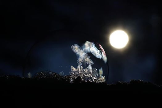 Night of The Spirits