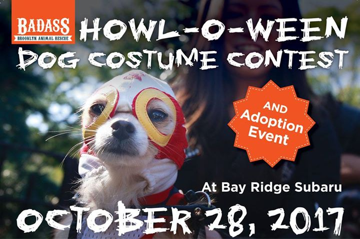 badass adoption event dog halloween costume contest