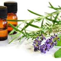 Health &amp Well Being through Essential Oils