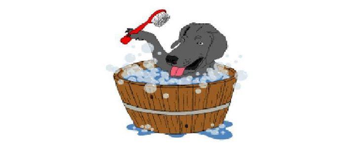 Dog wash at tractor supply co salisbury solutioingenieria Choice Image