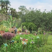 Guided tour of Penryn Campus gardens and Tremough House