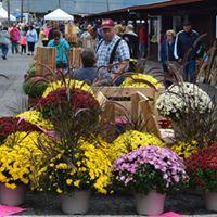 Hometown Farmers Market Craft Show