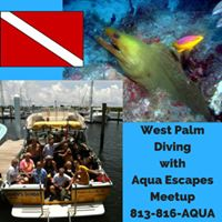 West Palm Beach Drift Diving