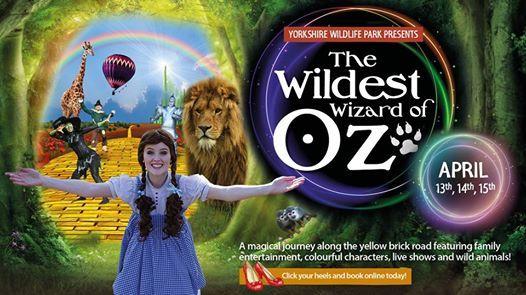 The Wildest Wizard of Oz