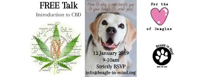 Free talk Introduction to CBD
