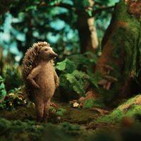 Hedgehogs Home at OIAF