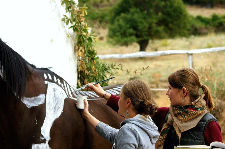 Corso di disegno del cavallo at sella sarda provincia di nuoro