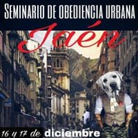Seminario Obediencia Urbana Jan