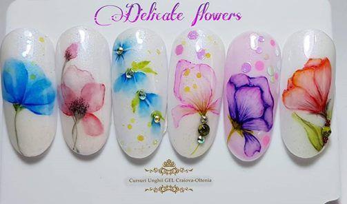 Drobeta Turnu Severin Delicate Flowers Aquarelle Tehnique At