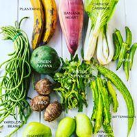 Appreciation of local organic vegetables