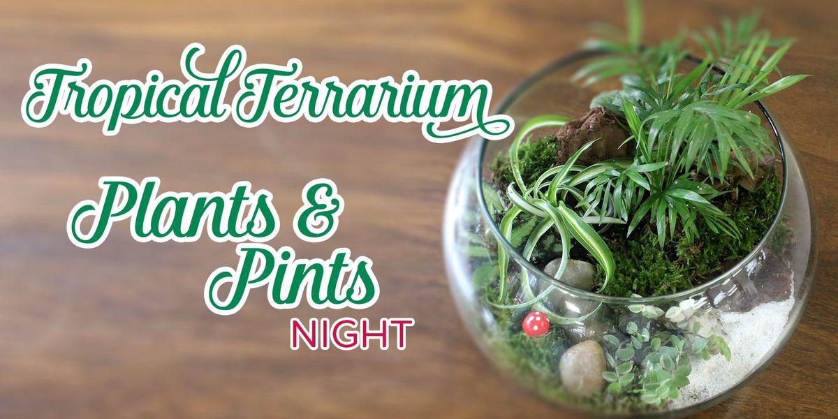 Plants Pints Night Tropical Terrarium At Revolution Taproom