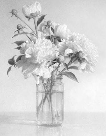 Drawing from Nature with Dorothea Osborn