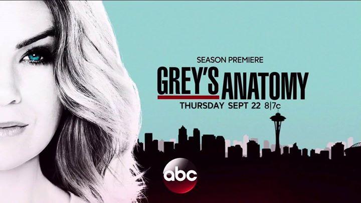 Video-Torrent Greys Anatomy Season 13 Episode 23 online 2017 at