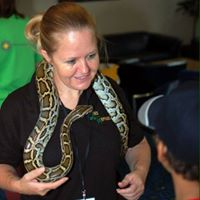 Afternoon Family Fun Day Lees Reptiles &amp Art Workshop