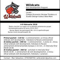 Wildcats Skill Development Program