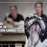 Curso Monitor de Educacin Canina ( Adiestrador )