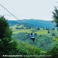 Zip Lining Tour At The Forest Kereita For Only 3300 Kes