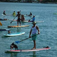 Stand Up Paddle Clini