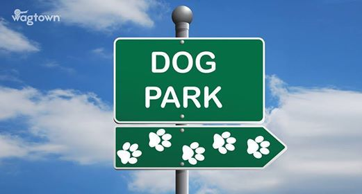 Lets Build a Dog Park in Dayton at Highland Park