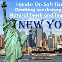 Hands-On Soft Tissue Grafting Course