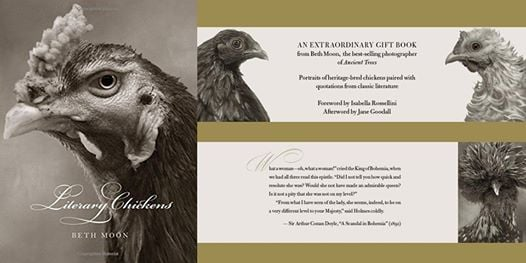 Book Signing Beth Moon - Literary Chickens (Abbeville Press)