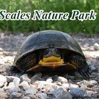 Scales Nature Park Presentation