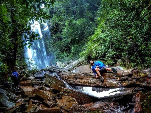 Kodachadri Trek - Jasmine of Hills
