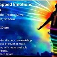 Workshop Processing Trapped Emotions