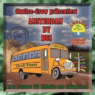 Amsterdam by Bus
