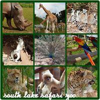 South Lakes Safari zoo  Summer Trip