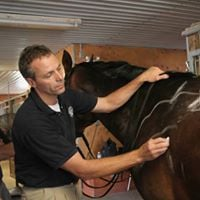 Jochen Schleese seminar on the 9-points of saddle fit